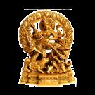 Shri Chandi Homam